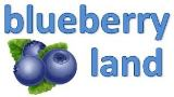 blueberry land